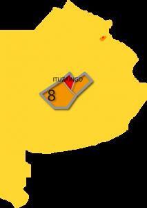 region8_ituzaigo