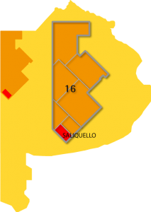 region16_saliquello